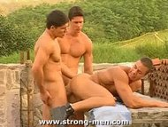 Three Bodybuilders Having Sex