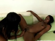 Pretty black lesbian pussylick
