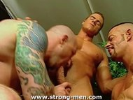 Trio Muscle X Sex