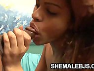 Spicy Shemale Cyara Sucking a black cock