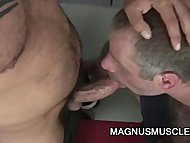 Hairy Dilfs Christian Volt and Tom Colt Locker Room Sex
