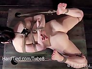 Dixon Mason in Shibari and Orgasm Denial