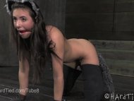 Casey Calvert is a little kitty girl