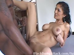 Bigtits Blackdongattackcom Cowgirl video: Lex wished for Persia and a good fuck