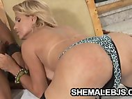Adriela Vendromine: Hot Shemale Throating A Black Cock