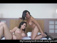 Two trannies having sex
