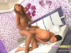Hot Hung latina shemale sittng on cock