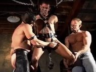 CBT Orgy suspended and ca...