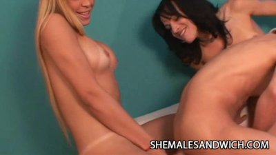 Two Shemales Anal Party