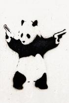 gboy14's profile image
