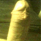 raistwaw's profile image